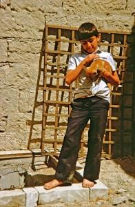 Chiche Tura, der kleine Schakal, ist ein beliebter Spielkamerad der Jungs in Transkaukasien und Vorderasien. Von ihm handelt das Lied Nr. 8
